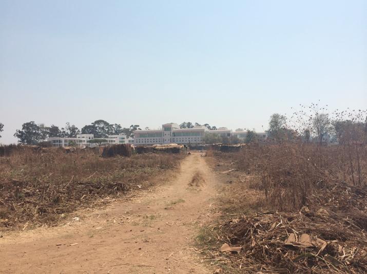 Harare informal settlement